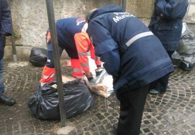 Aversa. Getta rifiuti in via del Campo: beccato dai Vigili Urbani