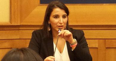"""Curdi, Brignone: """"Serve immediato stop export armi a Turchia"""""""