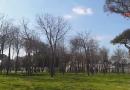(VIDEO) Aversa. Un Parco Pozzi 'nuovamente' spoglio