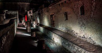 Campania by night, visite nel Parco Archeologico Ercolano e Reggia Carditello