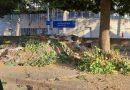 (FOTO) Aversa. Segnalazione cittadino: rifiuti PalaJacazzi fuori ad un parco cittadino