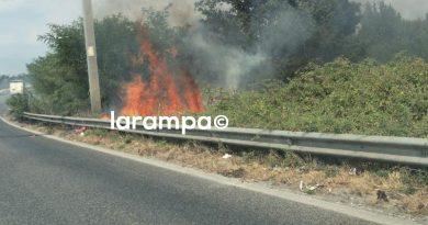(FOTO) Incendio sterpaglie sulla SP335
