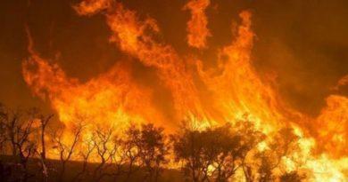 """(VIDEO) Amazzonia in fiamme, Bolsonaro: """"Incendi appiccati dalle ONG"""""""