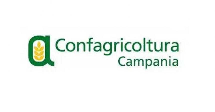 Risultato immagini per CONFAGRICOLTURACAMPANIA