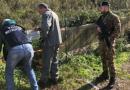 (VIDEO) Contrasto roghi tossici, blitz Interforze nel Casertano