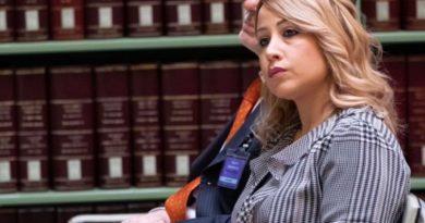 """Violenza donne, Rostan: """"Fondo speciale per occupazione vittime"""""""