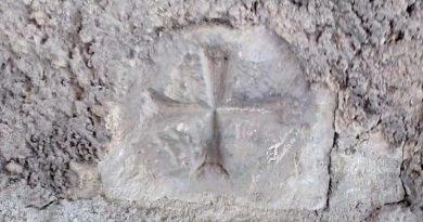 Storia, gli studi di Guido Carlucci: il Cammino Templare