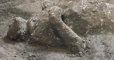 (FOTO/VIDEO) Pompei. Riemergono corpi di due antichi pompeiani grazie alla tecnica dei calchi