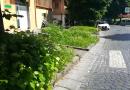 (VIDEO) Aversa. Erba incolta tra via di Giacomo e Piazza Trieste e Trento